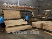 Crece inversión extranjera directa en provincia vietnamita de Binh Duong