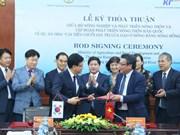 Invierte Corea del Sur en Vietnam para mejorar la cadena de valor del arroz