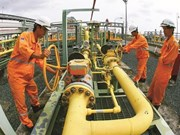 Superó grupo petrolero nacional de Vietnam las metas trazadas para primer semestre de 2019
