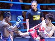 Compiten luchadores vietnamitas en Campeonato Mundial de Muay Thai en Tailandia