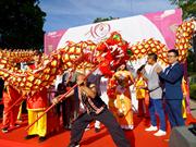 Festival de cultura vietnamita en Alemania