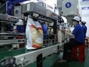 Crecen exportaciones agroforestales y acuícolas de Vietnam en primeros siete meses