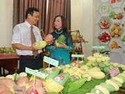Disminuye Vietnam sus exportaciones de frutas y verduras en primeros siete meses de 2019