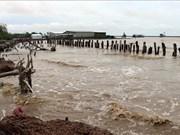 Fuertes lluvias en provincia sureña vietnamita causan daños millonarios