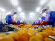 Incremento de tensiones comerciales EE.UU.- China afecta exportaciones de Vietnam