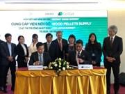 Impulsa empresa vietnamita exportación de pellets de madera al mercado japonés