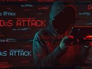 Comparten en Hanoi soluciones de seguridad cibernética