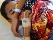 Reportan en Myanmar la muerte de 48 personas por dengue