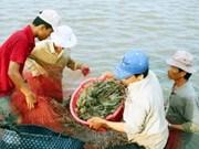 Presentan informe sobre el cambio climático en Viet Nam