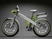 Recorrido en bicicleta a favor del medio ambiente