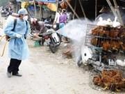 Viet Nam fomenta prevención contra gripe aviar