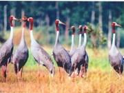 Parque Nacional de Tram Chim en lista Ramsar