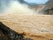 Viet Nam: Al menos 10 muertos por el tifón Haima