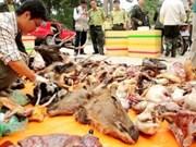 Viet Nam y Dinamarca por proteger animales salvajes
