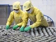Aumentan exportaciones vietnamitas a UE