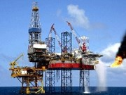 PetroVietnam cumple las metas semestrales