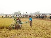Luxemburgo respalda a Viet Nam en desarrollo rural