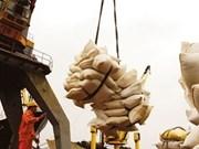 Viet Nam aumenta exportación agrícola a EAU