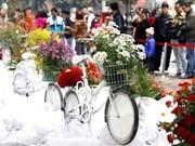 Millones de visitantes disfrutan festival de flores capitalino