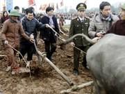 Presidente vietnamita participa en ritos agrícolas