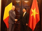 Bélgica apoya Vietnam a ingresar al Consejo de DD.HH.