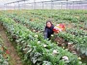 Vietnam moviliza recursos para desarrollo agrícola y rural