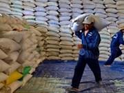 Vietnam exportará 700 mil toneladas de arroz aromático