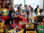 PIB de Vietnam crece 4,89% en primer trimestre