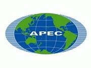 Foro sobre mujeres de APEC en Indonesia