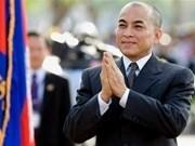Partido gobernante cambodiano respeta llamamiento de rey