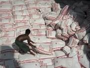 Tailandia subasta más de 300 toneladas de arroz