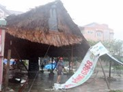 Saldo preliminar del tifón Nari en el Centro de Vietnam