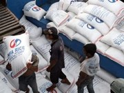 Exhortan a agricultores filipinos vender arroz al Estado