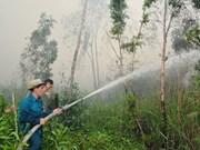 Alto riesgo de incendios forestales en Ca Mau