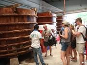 Espectacular aumento de turistas a Phu Quoc