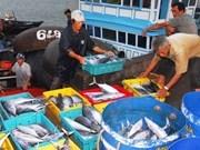 Alta producción acuícola en Vietnam pese a situación adversa