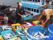 Bac Lieu: Aumenta exportación de productos acuáticos