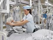Empresas vietnamitas buscan cooperación con Venezuela