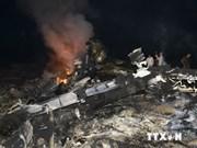 Cancilleres de ASEAN y UE condenan derribo de MH17