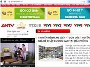 Vietnam, mayor propietario de nombres de dominio en idioma nativo