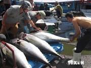 Productos exportables vietnamitas confirman posición en mercado sudcoreano