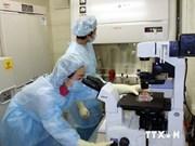 Vietnam redobla esfuerzos por prevenir virus Ébola
