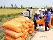 Vietnam e Irlanda firman memorando de cooperación agrícola