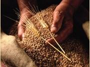 Vietnam, mercado potencial para cereales australianos