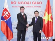 Impulsan Vietnam y Eslovaquia nexos de asociación