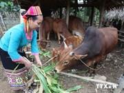 Bac Giang elogia ejemplos de reducción de pobreza