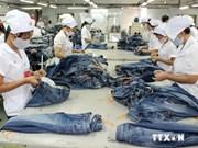 Mayor atención alemana a inversión y capacitación en Vietnam