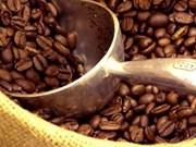 Vietnam exporta 1,6 millones de toneladas de café