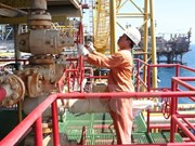 Caída de precios de petróleo en mundo afecta IPC en Vietnam