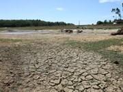 Prolongada sequía aumenta riesgos de incendios forestales
